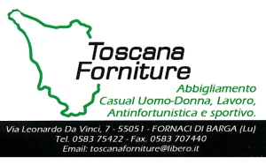 forniture log